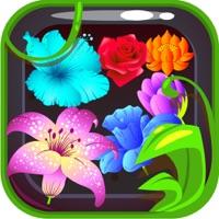 Codes for Fairy garden - Flower fantasy on bloom saga land Hack