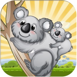 Koala Fall Survival Blast - Crazy Angry Dingo Escape Game for Kids
