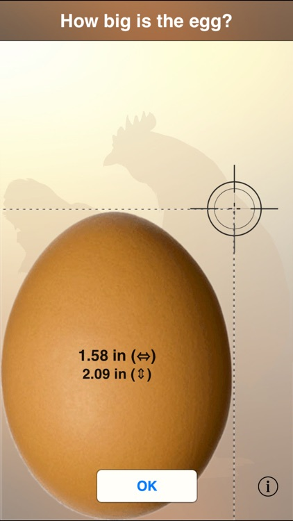 The perfect Egg timer