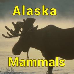 Alaska Mammals - Guide to Common Species