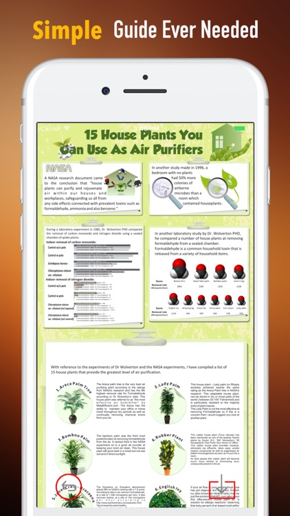 Grow Houseplants Guide-Tips and Beginners