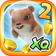 Activities of World Of Hamster 2
