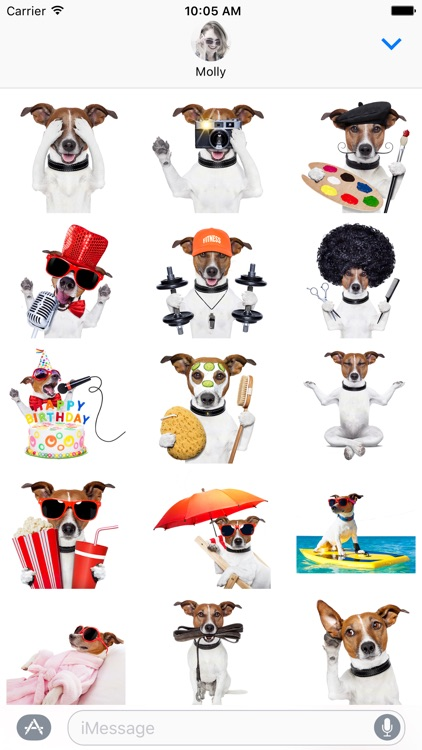 Jack the Terrier - Dog Stickers for iMessage