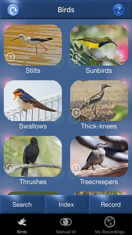 Bird Song Id Australia - Automatic Recognition screenshot-4
