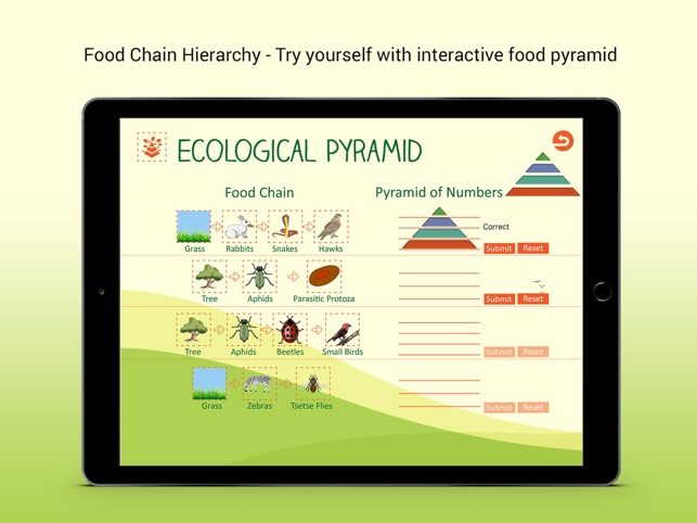 ecological pyramid on the app store