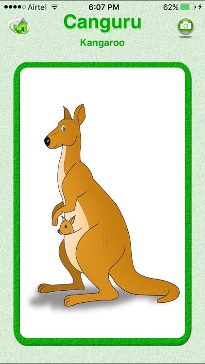 Flashcards Portuguese Lesson