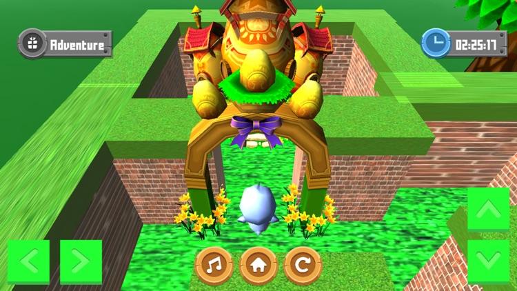 Adventure Maze 3D screenshot-4