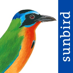 All Birds Trinidad and Tobago - a field guide