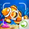 Fishy Ola - Fish Paparazzi