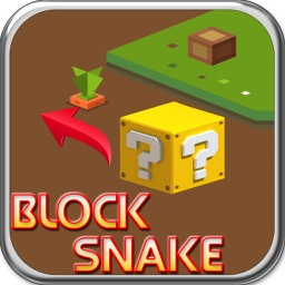 Block Snake Puzzle Game