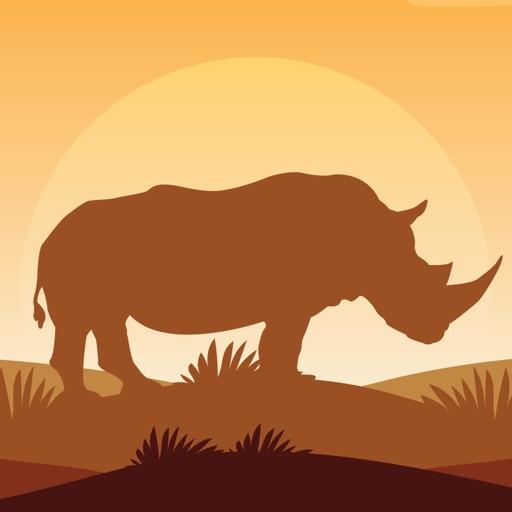 Fun with Rhino - Angry Rhino in jungle