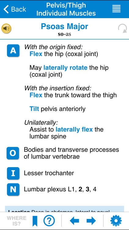 AMTA Massage Anatomy Guide screenshot-3