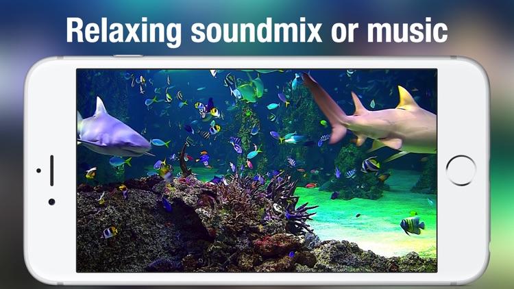 Aquarium Live +: Nature & coral reef ocean scenes screenshot-4