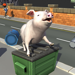 139.Bed Piggies