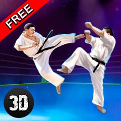 Karaté Do Combat Tigre 3D - 2