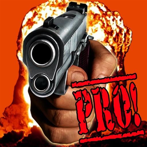 Picture It Pro