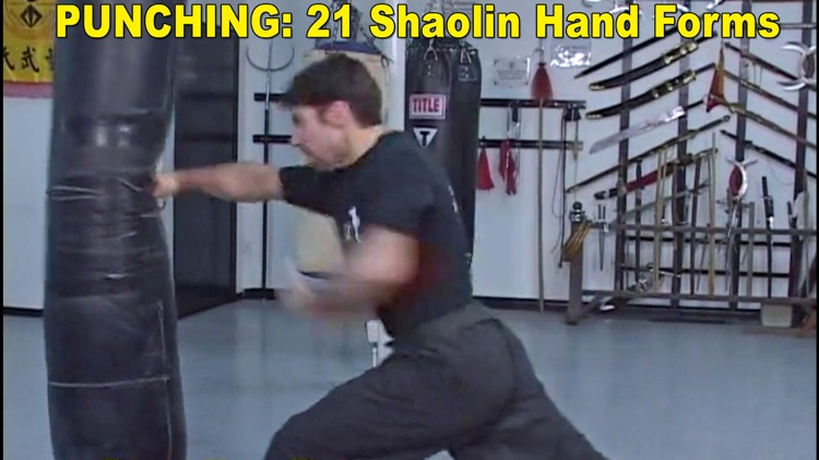 Shaolin Kung Fu Fundamental Training screenshot-3