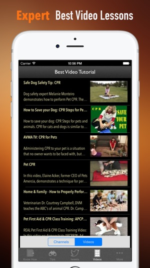 how to perform cpr on your pet manual on the app store rh itunes apple com Apple iPad Guide pdf expert ipad manual español
