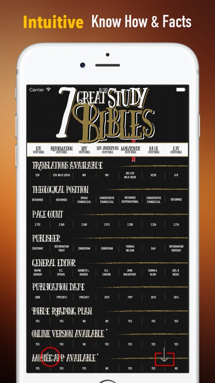 Bible Stories:The Jesus Storybook Bible