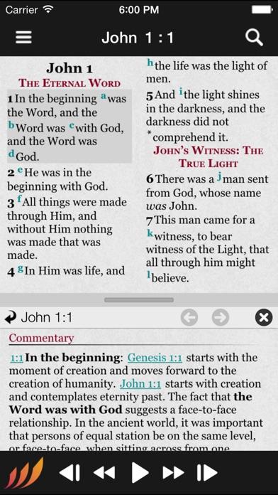 Bible review screenshots