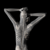 360 Anatomy for Artists HD: Female Figure