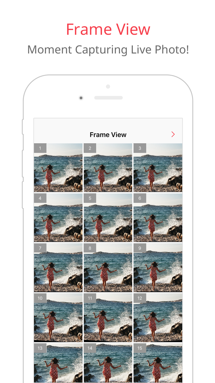 LivePix – Convert Live Photos to gif & video Screenshot