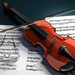 Self Learn Violin for Beginners- Tips and Tutorial