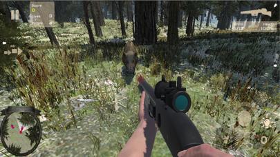 Bear Forest Hunting Patrol screenshot two