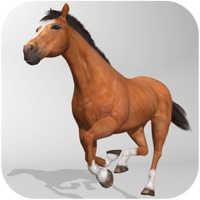 Codes for Horse Simulator 3D - Horseback Riding Hack