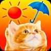 みんなのにゃんこ天気〜天気予報+猫写真で毎日に少しほっこり〜アイコン