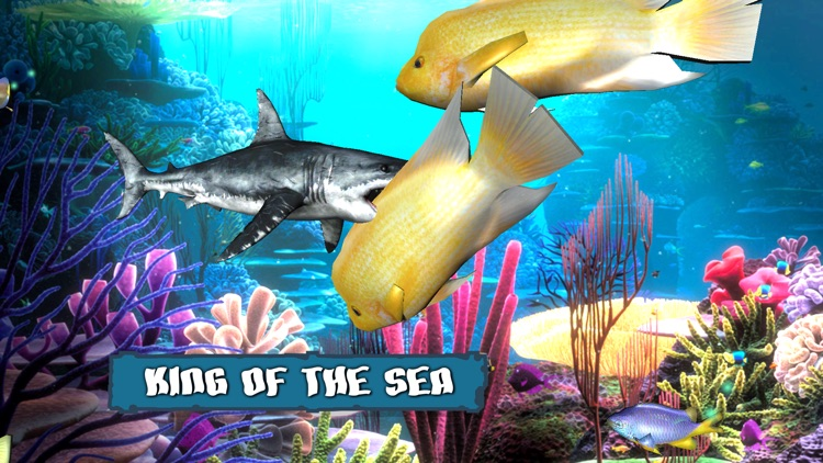 King Of The Fish Tank screenshot-3