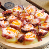 The Tapas And Spanish Cuisine Bible app review