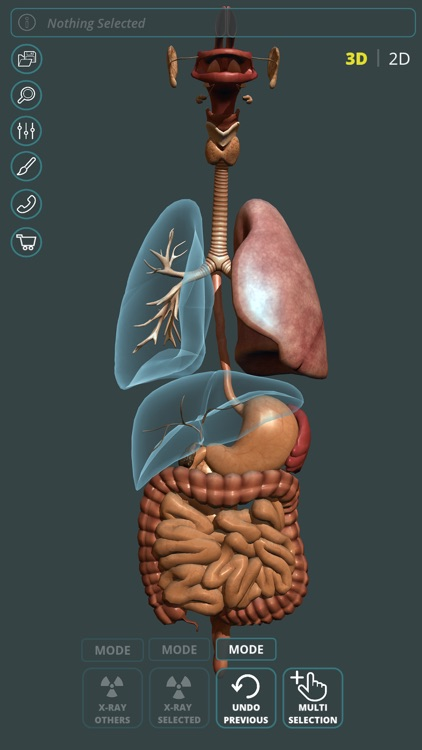 Visual Anatomy 3D | Human screenshot-2