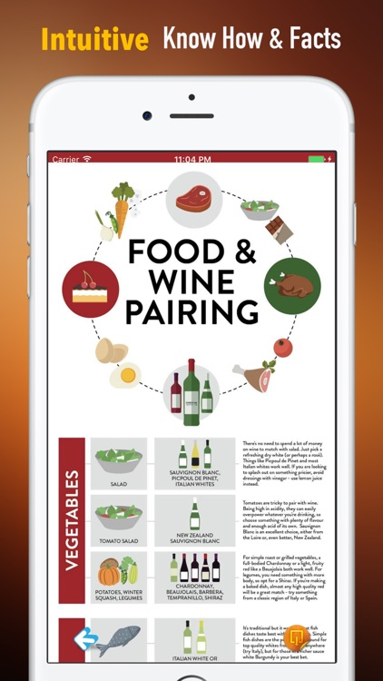 Wine Guide:Recipes,Basics and Hot Topics