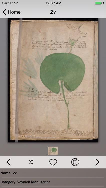 Voynich Manuscript Guide screenshot-3