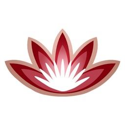 International Yoga Festival - Rishikesh