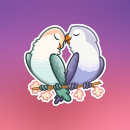 Love Birds Emoji Stickers - for iMessage