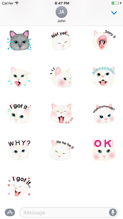 Cat Face Sticker