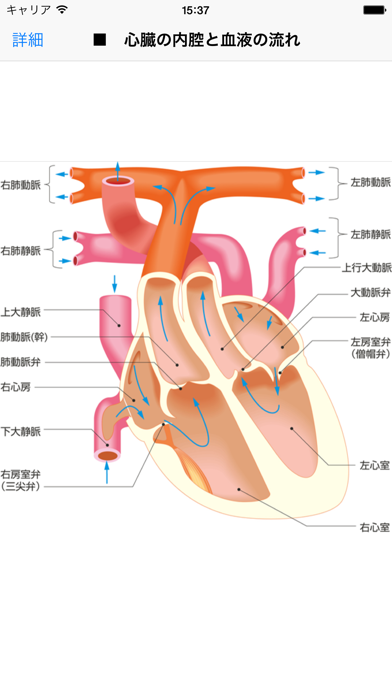 法研 六訂版 家庭医学大全科のおすすめ画像3
