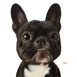 Bulldog Bling