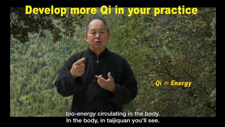 Yang Tai Chi for Beginners Part 1 screenshot-4