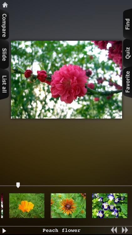 Flower Collection HD screenshot-4