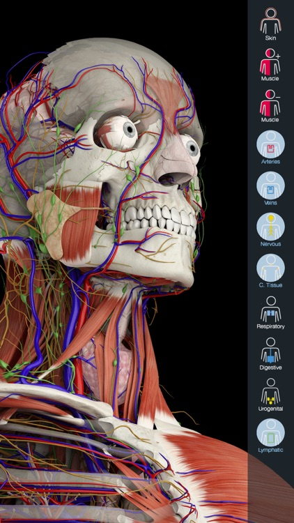 Essential Anatomy 5 screenshot-0