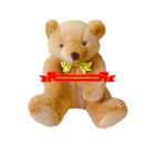 Bella Felice Teddy Bear HD icon