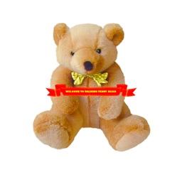 Talking Teddy HD