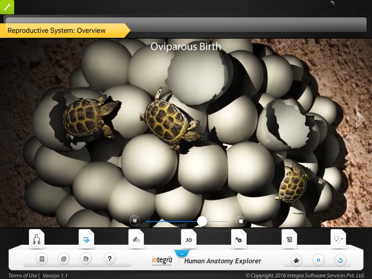 Human Anatomy Explorer - Reproductive System screenshot-3