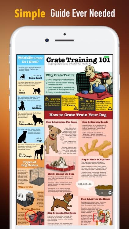 Puppy Training for Beginner Guide - Training Tips