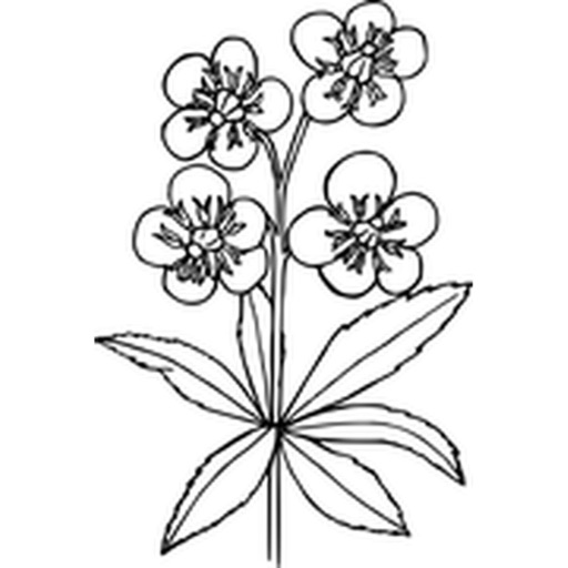 Flower Stickers (Black and White)