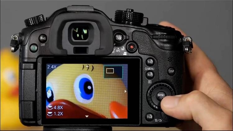 Panasonic Lumix GH4 from QuickPro HD screenshot-4