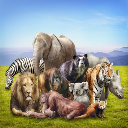 Animals : Wild Mammals Quiz icon